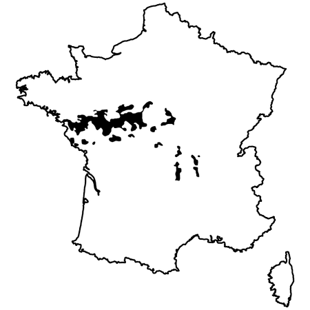 Map of Loire